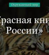 Красная книга России (1 класс, окружающий мир)