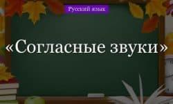 Согласные звуки русского языка – классификация в таблице