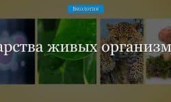 Царства живых организмов, типы и классы. Разнообразие живой природы