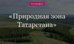 Природная зона Татарстана (Казани)