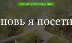 «Вновь я посетил» анализ стихотворения Пушкина по плану кратко – тема, жанр, образы