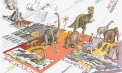 Геологические эры развития Земли в хронологическом порядке