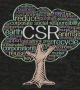 Корпоративная социальная ответственность - понятие, виды и значение