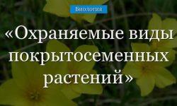 Охраняемые виды покрытосеменных растений (биология, 5 класс)