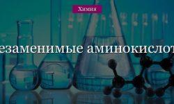 Незаменимые аминокислоты списком (химия, 11 класс)
