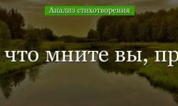 «Не то, что мните вы, природа» анализ стихотворения Тютчева по плану кратко – главный герой, композиция