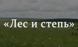 «Лес и степь» краткое содержание рассказа Тургенева – читать пересказ онлайн