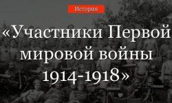 Участники Первой мировой войны 1914-1918, сколько стран участвовало