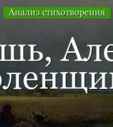 «Ты помнишь, Алеша, дороги Смоленщины» анализ стихотворения Симонова по плану кратко – год, тема, идея
