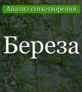 «Береза» анализ стихотворения Есенина по плану кратко – метафоры, главная мысль, эпитеты