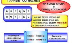 Примеры слов с парными согласными в корне и конце слова