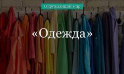 Одежда (окружающий мир)