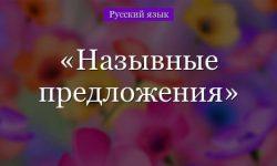 Назывные предложения – примеры, виды (8 класс, русский язык)