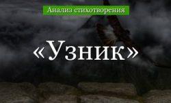 «Узник» анализ стихотворения Пушкина по плану кратко – средства выразительности, образы, антитеза, смысл