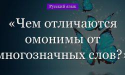 Чем отличаются омонимы от многозначных слов – отличие значений с примерами