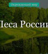 Леса России (4 класс, окружающий мир)
