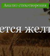 «Когда волнуется желтеющая нива» анализ стихотворения Лермонтова по плану кратко – история создания, тема, жанр