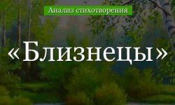 «Близнецы» анализ стихотворения Тургенева по плану кратко – главная мысль, жанр, год