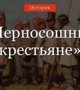 Черносошные крестьяне – определение в истории России 17 века (7 класс)