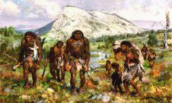 Первобытное общество - кратко об истории, характеристиках и этапах развития