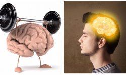 Мозговая активность - как повысить работоспособность мозга?