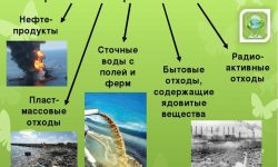 """Доклад на тему: """"Загрязнение воды"""" - источники, причины и последствия"""