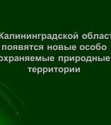 Презентация В Калининградской области появятся особо охраняемые территории