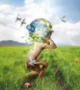 Биологическое и социальное в человеке - свойства, признаки и факторы развития