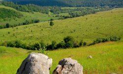 Восточно-Европейская равнина - описание и особенности географического положения
