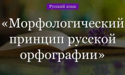 Морфологический принцип русской орфографии – примеры