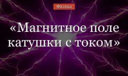 Магнитное поле катушки с током – энергия системы