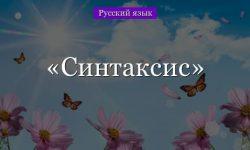 Синтаксис – что изучает в русском языке, определение, особенности предложений (8 класс)