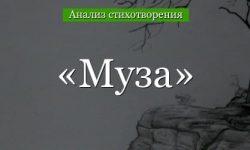 «Муза» анализ стихотворения Баратынского по плану кратко – рифма, идея, жанр