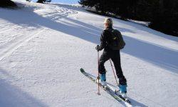 Техника лыжных ходов - классификация, особенности передвижения и способы подготовки