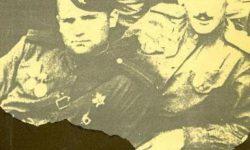 Краткое содержание повести Некрасова «В окопах Сталинграда»