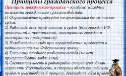 Основные правила и принципы гражданского процесса