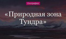 Природная зона России Тундра, план описания и харакетристика (почва, животные)