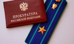 Прокуратура в системе государственных органов РФ - понятие, структура и место