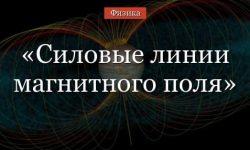 Силовые линии магнитного поля – направление, свойства