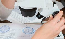Основания для назначения судебной экспертизы - порядок проведения, особенности и задачи