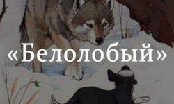 «Белолобый» краткое содержание рассказа Чехова – читать пересказ онлайн