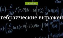 Алгебраические выражения – какие выражения называют числовые и алгебраические (7 класс)