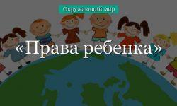 Права ребенка – принципы декларации (4 класс, окружающий мир)