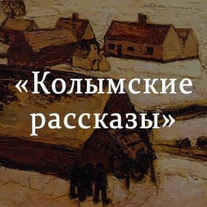 «Колымские рассказы» краткое содержание книги Шаламова – читать пересказ онлайн