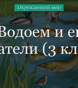 Обитатели соленых и пресных водоемов (3 класс)