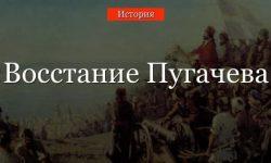 Восстание Пугачева – кратко о восстании, участниках и подавлении