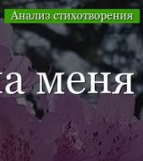 «Идешь, на меня похожий» анализ стихотворения Цветаевой по плану кратко – тема, идея, жанр