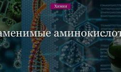 Заменимые аминокислоты и частично заменимые – список