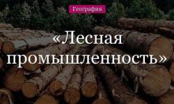 Лесная промышленность России и мира, факторы размещения и проблемы