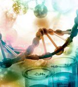 Естественные науки - классификация и перечень дисциплин, предмет и объект изучения